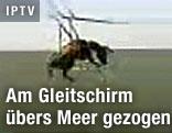 Fliegender Esel am Gleitschirm