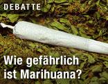 Joint und Marihuana
