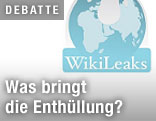 WikiLeaks-Screenshot