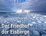 Eisberg in Südgeorgien