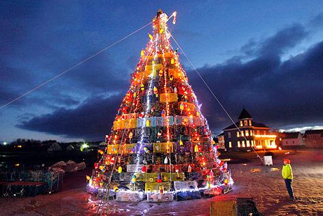 Christmas Trees Maine