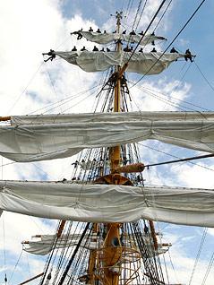 """Mast auf der """"Gorch Fock"""""""