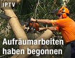 Arbeiter zersägt Baum
