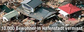 Zerstörte Häuser in japanischer Hafenstadt Minamisanriku