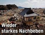 Zerstörte Siedlung
