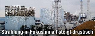 Japanisches AKW Fukuschima