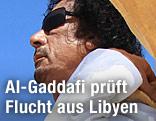 Libyens Machthaber Al-Gaddafi