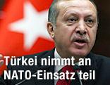 Türkischer Premierminister Erdogan