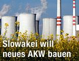 Atomkraftwerk Bohunice