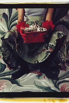 In Blumenmuster gekleidete Frau, vor Tapete mit Blumenmuster, hält mit Fröschen gefüllte Handtasche