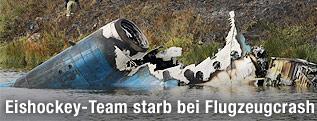 Wrackteile des Unglücksflugzeugs