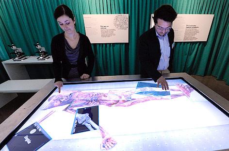 Ein interaktiver Bildschirm mit der Darstellung der mumifizierten Leiche des Ötzi