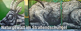 Steinbock-Graffiti des Streetart-Künstlers ROA