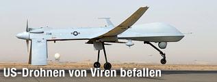 MQ-1B Predator im Irak