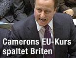 Der englische Premierminister David Cameron