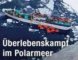 Luftaufahme des russischen Frachters Sparta im Polarmeer