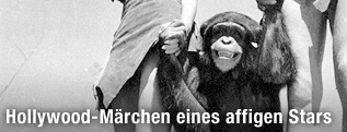 Johnny Weissmuller, als Tarzan, Maureen O'Sullivan als Jane und Cheeta in einer Szene aus 1932 - Tarzan the Ape Man