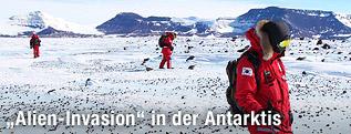 Südkoreanische Forscher in Victoria Land in der Antarktis