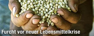 Hände mit Sojabohnen