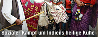 Menschen betrachten eine heilige Kuh in Indien