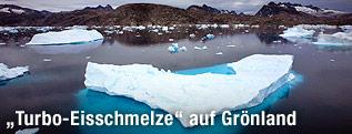 Eisberge in einer grönländischen Bucht