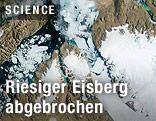 Satellitenbild eines abgebrochenen grönländischen Eisbergs