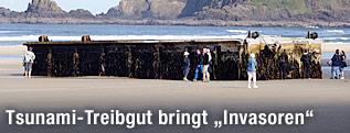 Anleger am Strand