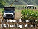 Erntefahrzeuge auf einem Feld