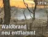 Brennender Wald und Kohlereste