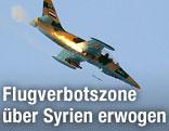 Kampfflugzeug der Assad-Truppen