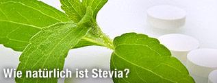 Blatt der Steviapflanze neben Stevia-Tabletten