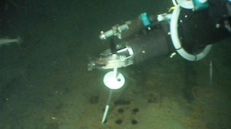 Ein Greifarm des britisch-russischen Forschungs-U-Bootes führt eine Messsonde in den Rumpf des 2003 versunkenen russischen U-Boots K-159 ein, um den Austritt von Radioaktivität zu kontrollieren