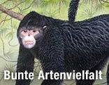 Zeichnung eines Affen mit einer Elvis-Locke