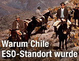 ESO-Mitarbeiter auf Maultieren auf dem Cerro Morrado im Juni 1963
