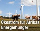 Windräder in Kenia