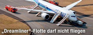 Notrutschen an einer Boeing 787 der All Nippon Airlines