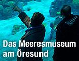Aquariumbesucher