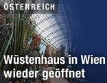 Wüstenhaus in Wien