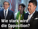 Karl Schnell (FPÖ), Astrid Rössler (Grüne), Hans Mayr (Team Stronach)