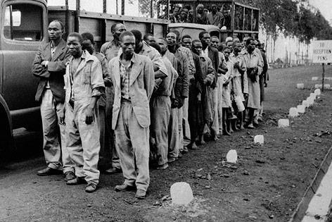 Als Mau-Mau-Rebellen verdächtigte Inhaftierte