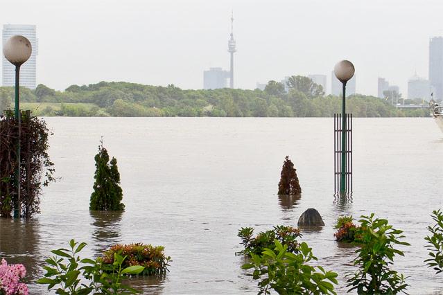 Überfluteter Treppelweg in Klosterneuburg mit Blick auf die Donaucity in Wien