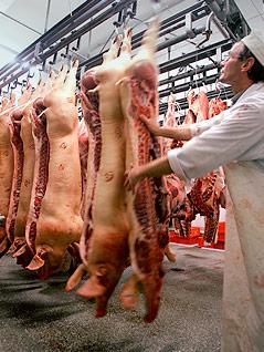 Arbeiter in deutscher Fleischfabrik