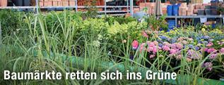 Gartenabteilung in einem Baumarkt