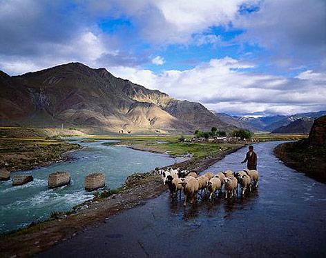 Schafhüter mit einer Herde Schafe neben einem Fluss