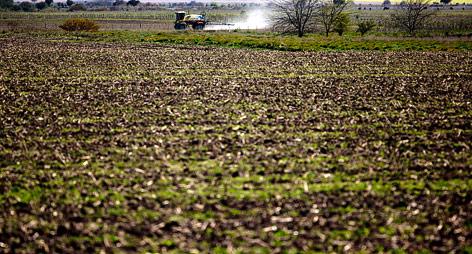 Traktor besprayt Feld mit Pestizide