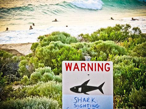 Schild warnt vor Haien nahe Gracetown