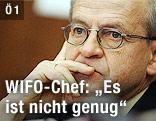 Chef des Wirtschaftsforschungsinstituts (WIFO), Karl Aiginger