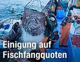 Ein Netz voller Fische wird auf ein Fischerboot gehoben