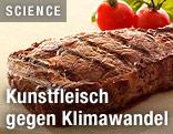 Gebratenes Steak aus Kunstfleisch