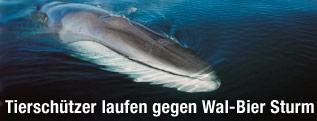 Finnwal
